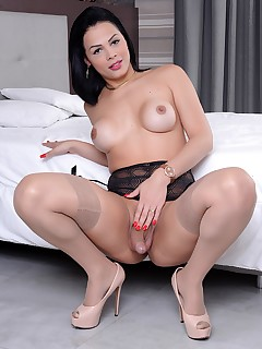 Sexy tranny Bruna Castro shows her tits and dick | Dream Tranny